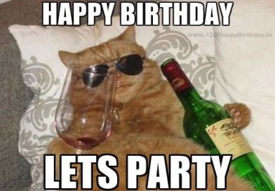 Top 10 Happy Birthday Cat Meme